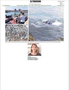Salviamo dalla plastica il mare di Piombino 4