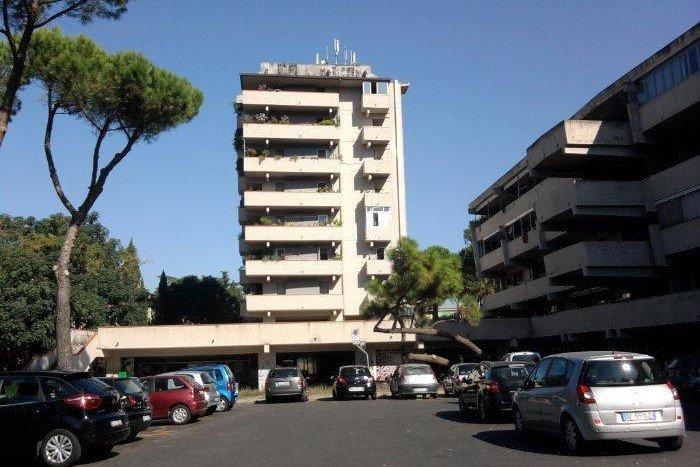 Firenze, Stella: taglio pini