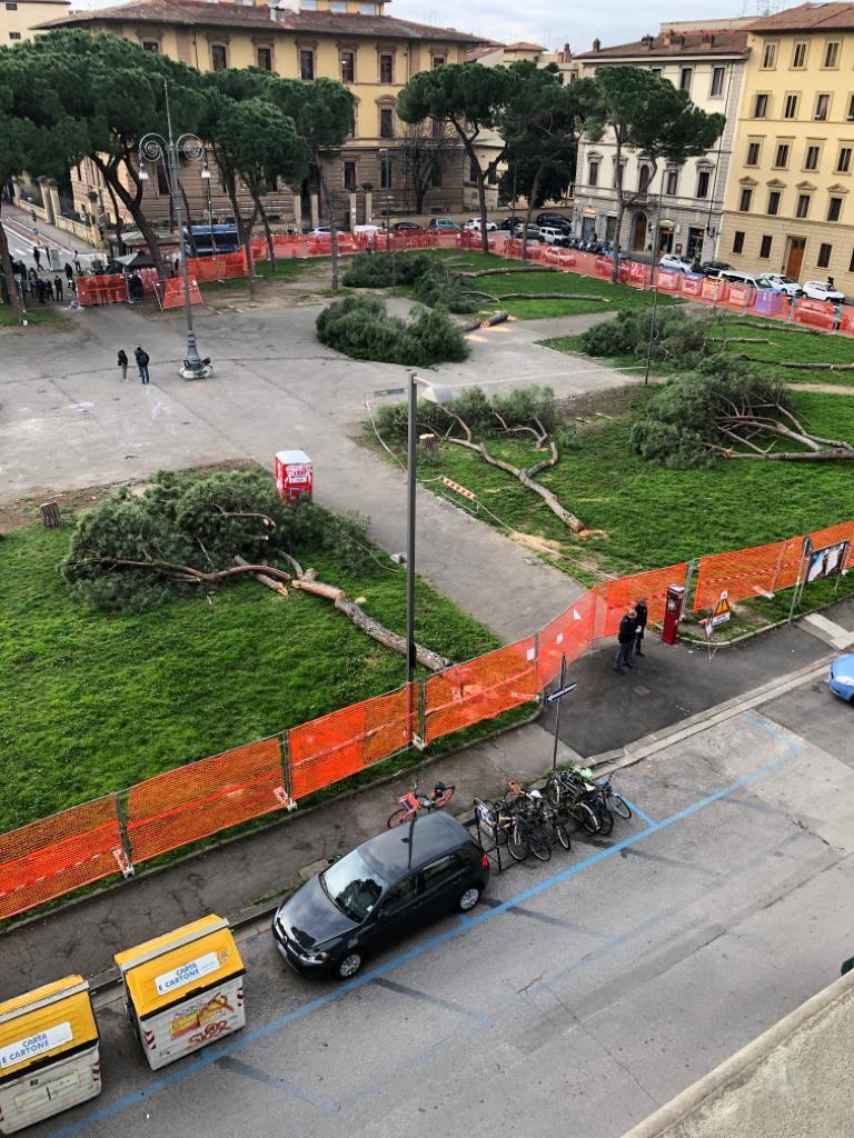 FOTO - Taglio alberi piazza della Vittoria