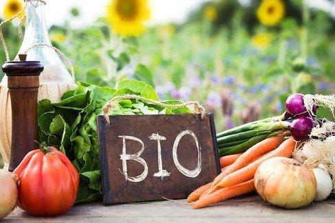 Agricoltura, Marchetti: il biologico a secco di incentivi