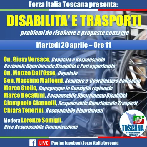 Conferenza disabilità